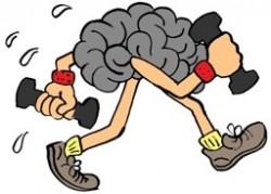 weights brain small 250x1791 Memaksimalkan Potensi Diri
