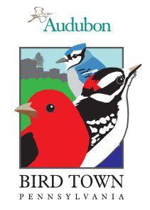 great-backyard-bird-count