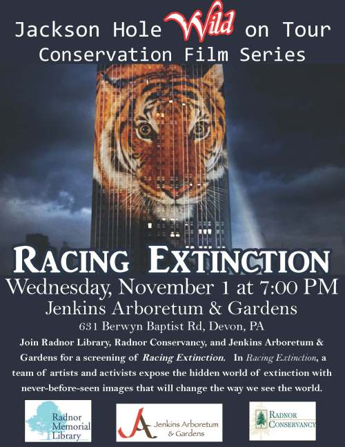 racing extinction (1)