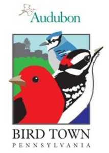 bird-town-logo-2