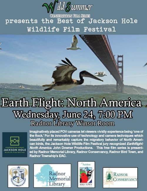 Wild Summer Earth Flight