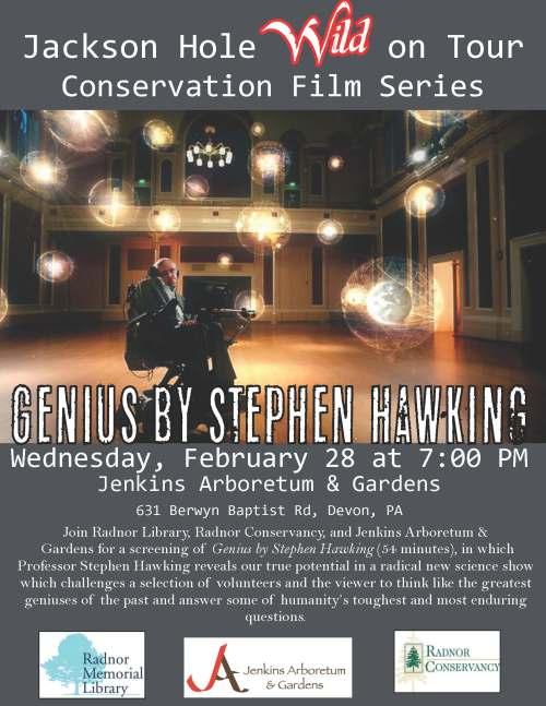 genius by stephen hawking (2)